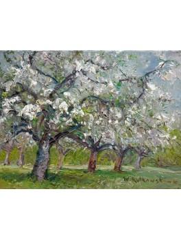 Jabłonie w Koniku